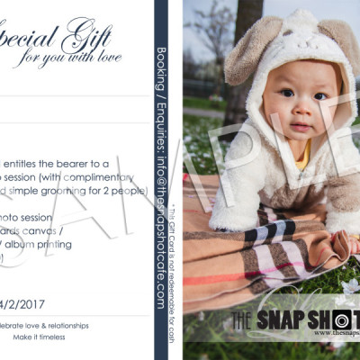 Gift Card (Family / New born portrait, value: £250)