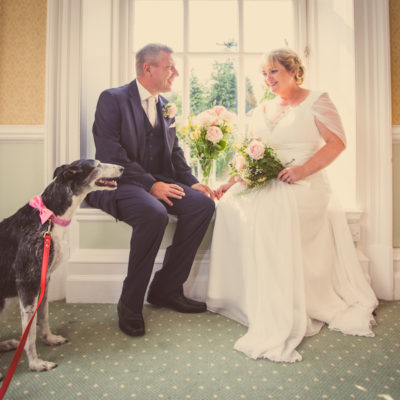 Strike a Paws – Pets at Your Wedding